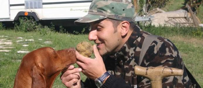 Allevamento Cani da Tartufo in Toscana Bracco Ungherese